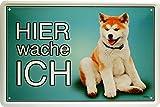 Hier wache ich - Akita - Hund Dog 20x30 cm Blechschild 1552