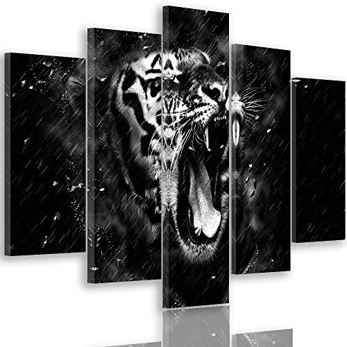 Feeby Frames, Tableau multi panneaux - 5 parties - Impression sur toile, Décoration murale, Image imprimée, Type A, 150x100 cmTIGRE, ANIMAL, TÊTE, GOUTTES D'EAU, NOIR ET BLANC