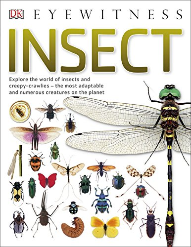 Insect : explore the world of insects and creepy-crawlies, the most adaptable and numerous creatures on the planet.
