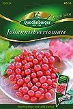 Rote Johannisbeertomaten von Quedlinburger Saatgut