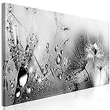 decomonkey Bilder Pusteblume 120x40 cm 1 Teilig Leinwandbilder Bild auf Leinwand Vlies Wandbild Kunstdruck Wanddeko Wand Wohnzimmer Wanddekoration Deko Blumen Abstrakt schwarz-weiß