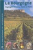 La Bourgogne :  Le Paysage bourguignon abordé par le visuel