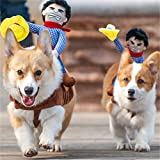 Pet Dog Kostüme Halloween Cosplay Cowboy Rider Style Hunde Outfits