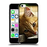 Just Phone Cases Schutz Hülle TPU Case Schutzhülle Silikon Tasche Dünn Transparent // V00004287 Katze liegend auf Holzbrettern // Apple iPhone 5C