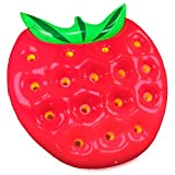 Garden Friend Strawberry Materassino Gonfiabile, Fragola (Verde-Rosso), 32 x 27 x 18 cm immagine