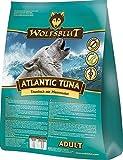 WOLFSBLUT Atlantic Tuna, 15kg
