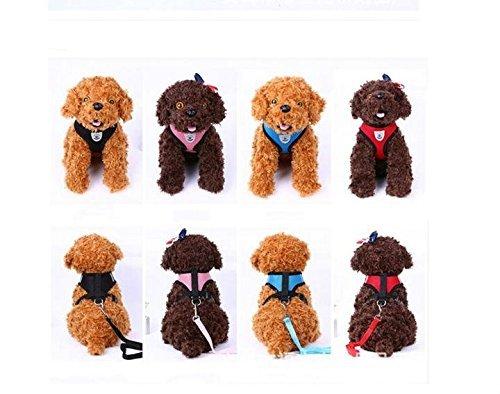 LA VIE Hundegeschirr Einstellbar Air Mesh Gewebe Weiche Bequeme Geschirr mit Einfach Sicher Kontrolle Hundeleine für Kleiner Mittlerer und Großer Hunde Welpen Haustier S - Air-mesh-gewebe
