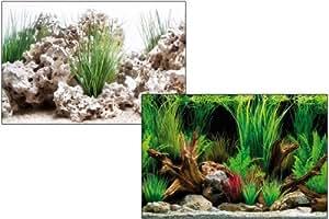 Wave - Poster Aquarium - Wonder - Hauteur 45 Cm - Au Mètre