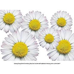 PEGATINA adhesiva, diseño floral: Flower Set 06-Mini - 36 piezas