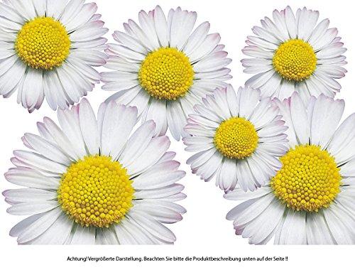 Autoaufkleber, Blumendesign: Flower Set 06-Mini-36 Stück