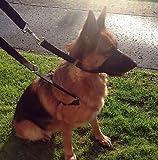 Kit guinzaglio anti strattoni,guinzaglio per addestramento cani poliziotto con imbracatura e collare a cavezza