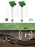 Gardigo Solar Maulwurfabwehr 2er Set, Maulwurfschreck, Maulwurfbekämpfung, Wühlmausschreck, mit Alu-Stab und IP56, 700 m Wühltierfrei