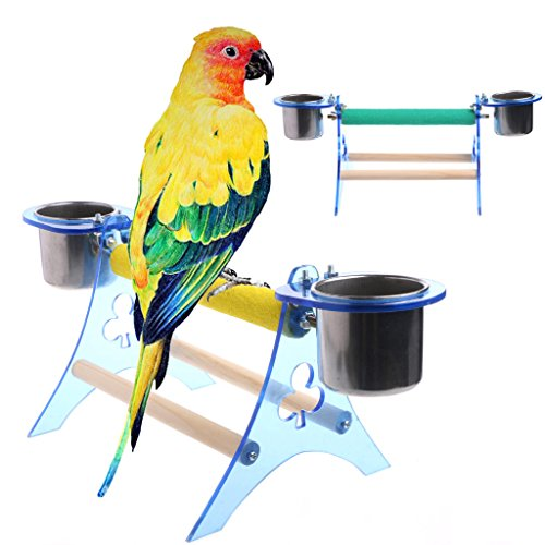 dairyshop Parrot Sitzstange Ständer Plattform Play Fun Northern Toys Pet Holz Spielstation für papagien mit Schnabeltasse für Vogelkäfig