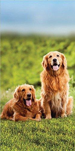 Sweet Animals Hund Golden Retriever Strandtuch 70 x 140cm