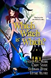 Image de Which Witch is Which? (The Witches of Port Townsend Book 1) (English Edition)