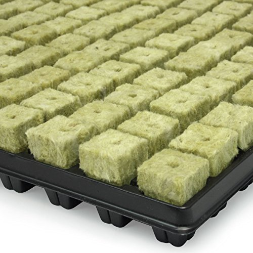 Bouchons de laine de roche plateau de 150U - GRODAN