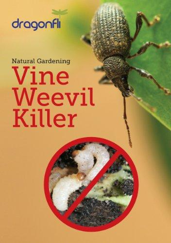 vine-weevil-killer-20-sqm