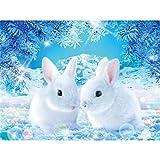 Riou DIY 5D Diamant Painting voll,Stickerei Malerei Crystal Strass Stickerei Bilder Kunst Handwerk für Home Wand Decor gemälde Kreuzstich Tier-Serie Kaninchen (Mehrfarbig, 30 * 40cm)
