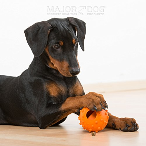 """MAJOR DOG """"Snack-Ei"""" Intelligenzspielzeug Hundespielzeug robust & schadstofffrei TÜV geprüft Dog Activity - 2"""