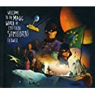 Welcome to The Magic World of Captain Samourai Flower