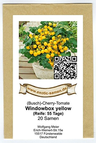 Balkontomate – Buschtomate – gelbe Cherry – Windowbox yellow – 20 Samen