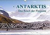 Antarktis - Das Reich der Pinguine CH-Version (Wandkalender 2019 DIN A3 quer): Antarktis - Lebensraum der Pinguine - Ein Blickfang im Büro und zu Hause (Monatskalender, 14 Seiten ) (CALVENDO Natur)