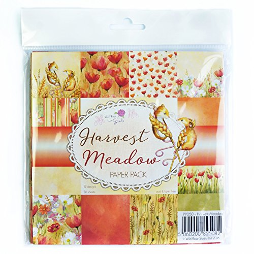wild-rose-studio-ltd-single-sided-paper-pack-6-inch-x-6-inch-3harvest-meadow-acrylic-multicoloured-2
