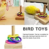 yingmu Boccola di Plastica in Legno Pappagallo Bocconcino Toy Parrot Educational Toy Bird Toy supportable