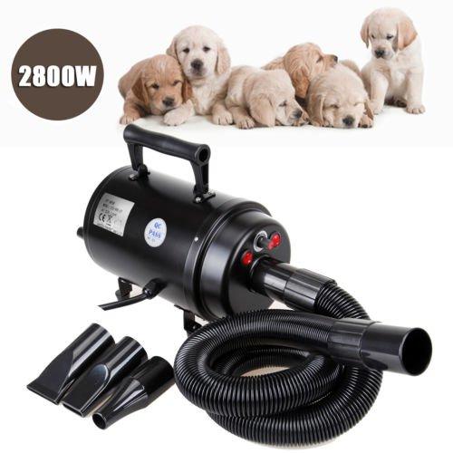 Euroeshop Dog Pet capelli governare Blaster Pulsore Dryer riscaldatore 2800W Nero