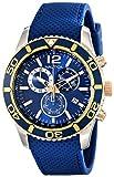 Nautica - Reloj de Pulsera para Hombre, Azul/Dorado (NAD16502G)