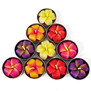 Lot de 10 bougies chauffe-plat en forme de fleur de frangipanier