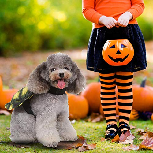 Haustier Kostüm, Halloween Turtle Shell Haustier Rucksack Hundekostüm für Party Shooting Urlaub Dekoration (Drei Ist Company Halloween Kostüm)