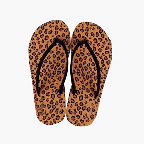 Webla Frauen Sommer Flip Flops Schuhe Sandalen Slipper Innen-und Outdoor-Flip-Flops Kaffee