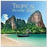 ERIK - Calendario de pared 2020 Tropical Paradise, 30 x 30 cm