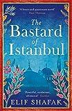 The Bastard of Istanbul (English Edition)