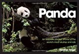 Panda: Intimate Portrait of One of the Worlds Most Elusive Creatures