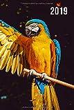 2019: Jan - Dez Wochenplaner | 365 Tage Terminkalender mit Uhrzeit | 1 Tag auf 1 Seite, ca. A5 | Papagei Ara