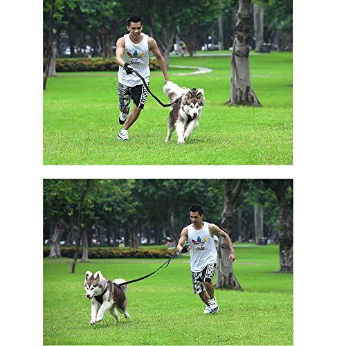 Bencreative Traction Collars Saddle Dog Chest Strap Daily Use Imbracatura Leggera Traspirante per Cani di Taglia Media e Grande Oxford Red M