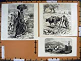 Frauen Judaea Ramleh Nicopolis Emmaus C1890 Palästina