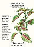 Botanical Interests Edible Red Leaf Amaranth Seeds 50 Grams