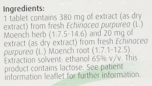 A Vogel Echinaforce Echinacea Tablets, 250 mg – 120 Tablets