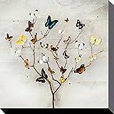 Mariposas - Tree Of Butterflies, Ian Winstanley Cuadro, Lienzo Montado Sobre Bastidor (40 x 40cm)