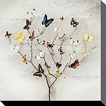 Amazon.es: cuadros mariposas
