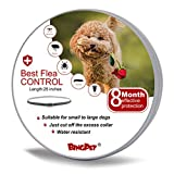 Best Flea And Tick Prevention For Dogs - BINGPET Flea and Tick Collar Prevention for Dogs Review