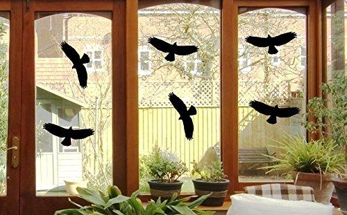6-uccello-adesivi-uccelli-finestra-vetro-greif-uccello-finestra-da-24-x-10-cm-b397-plastica-nero-je-