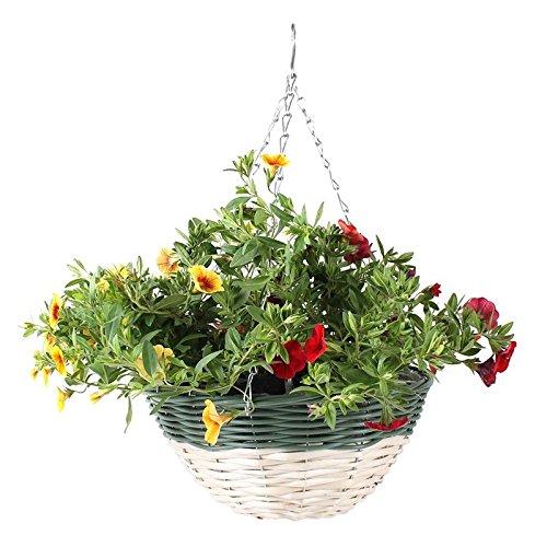 Bac à fleurs pour jardin/pots de fleurs à suspendre/fleurs suspendus ntöpfe Ø30 x 15/50H cm