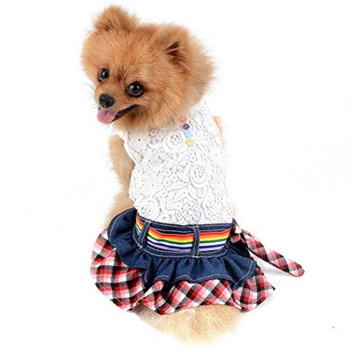 (Zunea Pet Hund Kleid Weiche Baumwolle Ärmellos Puppy Hund Shirts mit Strick Blumen und Rainbow Bund Cute Little Dog Mädchen Plaid Halskrause Rock für Kleine Hunde Katzen)