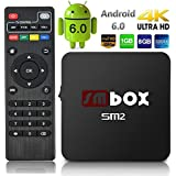 SMBOX SM2 Android TV Box Smart TV Box Amlogic S905X Quad core Cortex A53 Android 6.0 1GB+8GB WIFI 2.4GHz 4K