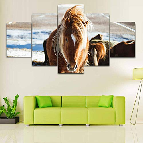 EUFJHS 5 Teilig - Leinwandbilder -In Leinwanddrucke Hd Große Animals Horse Prints Pictures Canvas Painting Wall Poster Living Room Modern Artwork Mural Wall Decor Chart-B Rahmen -