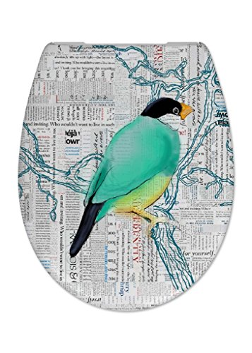 Cedo Design WC Sitz Bird mit Absenkautomatik Softclose Classic, Abnehmbar mit Takeoff Original Abnahmefunktion; aus Duroplast für ovale Keramiken mit Befestigung von Unten